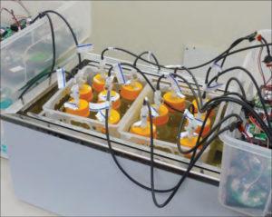 gas_fermentation_system